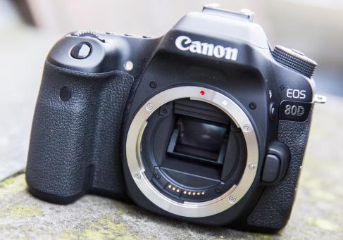 Canon EOS 80D 6